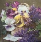 Servett Old England Violets