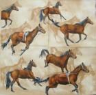 Servett Hästar