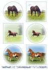 Barto Design Klippark - Hästar