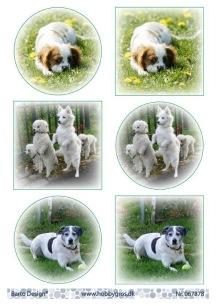 Barto Design Klippark - Hundar - Barto Design Klippark - Hundar