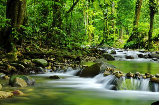 Miljö är en viktig del av ISO Certifiering