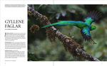 A 12 page article about me in the nature photography magazine for Scandinavia.