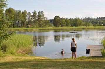 Barn och hund tar ett kvällsdopp vid badplatsen