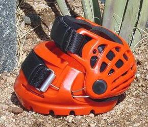 Renegade Sport orange