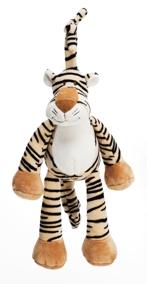 Dinglis speldosa Tiger - Dinglis speldosa Tiger