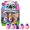 Hatchimals Colleggtibles 4 pack + Bonus , Säsong 2