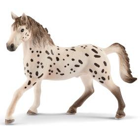 Schleich Knabstrupper, hingst 13889 - c Knabstrupperhingstar och appaloosahingstar är väldigt lika eftersom båda är prickiga.  Knabstrupperhingstar och appaloosahingstar är väldigt lika eftersom båda är prickiga. De båda hästraserna har dock utvecklats oberoende av varandra. Knabstruppern har