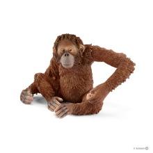 Schleich 14775 Orangutang, hona