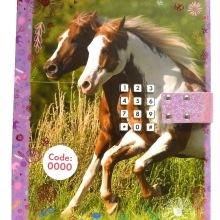 Horses Dreams, Dagbok kod & ljud