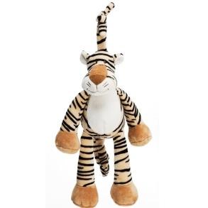 Diinglis speldosa Tiger - Diinglis speldosa Tiger