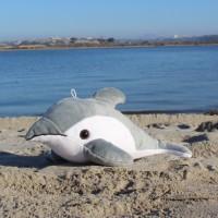 Shore Buddies - Delfinen Finn