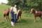 Per and Birgitta overseeing the herd of young stallions