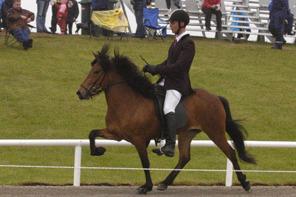 Mother Álaborg came third at Landsmót 2004