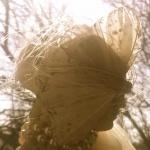 Fjärilsbrud