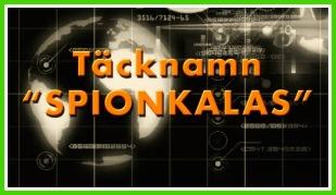 Barnkalas tema - Spionkalas från Spy:Co