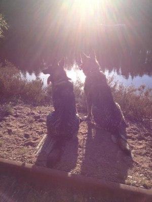 Axa sitter med mormor Diva(Fönn) och njuter vid sjön.