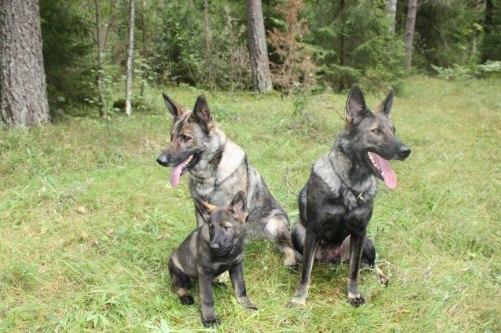 tre generation mamma dotter och barnbarn Diva/Rixi/Axa