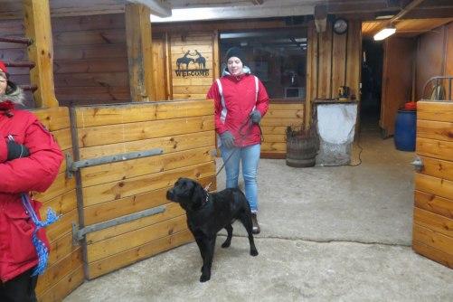 Lisa med sin härliga labbe vappis Sam