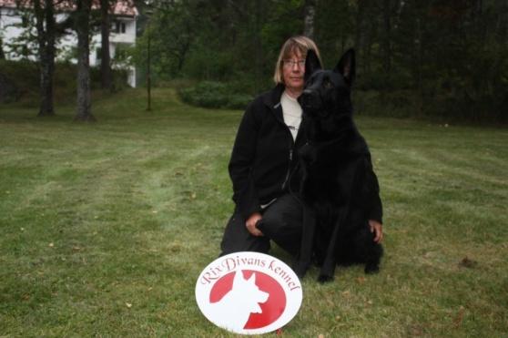 RixDivans Ace uppfl lkl spår,lydkl 2 utbildad pyroteknik hund med matte Cecilia