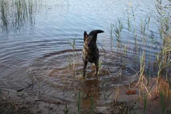 Rixi säger kom då ska vi inte bada?
