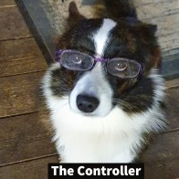 thecontroller