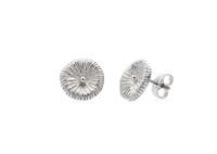 Fossil - örhängen i silver. Pris 550 kr