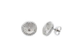 Fossil - örhängen i silver