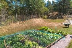 trädgårdshägn