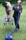 Fönar - Leonberger