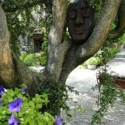 Spännande trädgårdsdetaljer