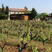 La Broquières vinfält
