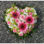 Hjärta_rosa_vit_grön