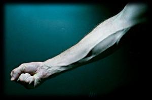 forskning om blod som föryngrar
