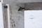 Altanbord Skyberga kvistfritt detalj ben