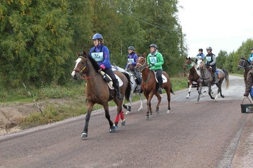 Femåringar på väg under Unghästfinalen 2013.    Foto: Ulf Lonäs