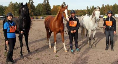 Från vänster: BP Taurus, El Cobrah och Wielka Zolana. Tre jämna finalister.