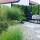 Berne&Christels trädgård