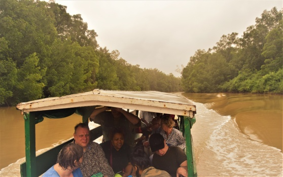 Utflykt bland plantagerna i Surinams regnskog. Februari 2020.
