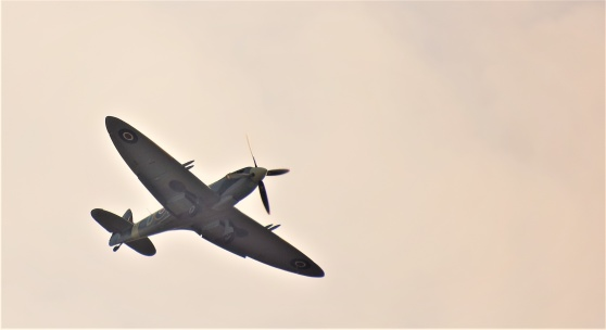 Spitfiren över Sola i motljus...