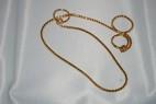 Halsband, snakelänk