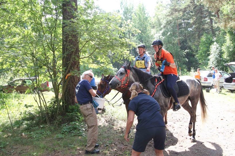 Servicestopp med vatten och dricka till hästen och ryttaren och koll av hästskorna gör man på flera ställen längs banan och går fort. På tävling kan det ta en till två minuter eller när hästen inte vill dricka mer. Foto: Ulf Lonäs