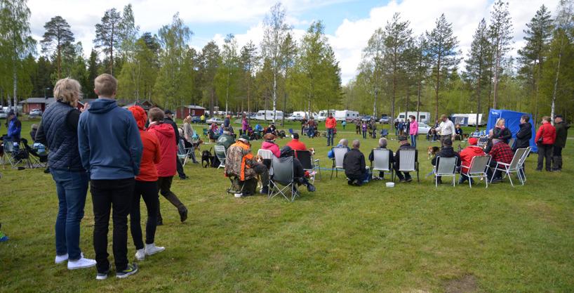 9.  Den nya utställningsplatsen vid Fåröns stugby i närheten av Piteå var en trevlig bekantskap där utställare och publik trivdes i det vackra men tidvis något blåsiga vädret.