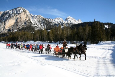 Going on flat ground or a little uphill with downhill skis is ... easier with the help of a horselift. During the day, you will get some help from the horses in the Secret Valley during our Ski Safari between the races.