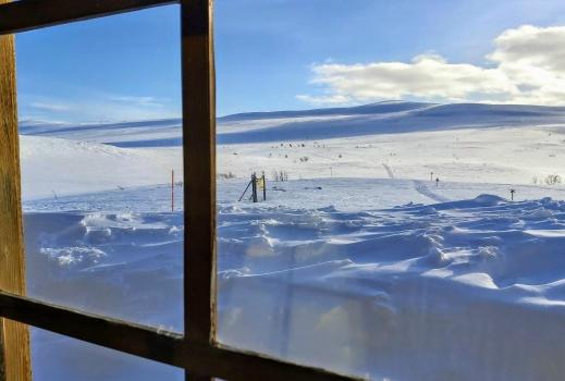 Stilla dag över fjället, inga människor, inga snöskotrar, en rofylld dag framför oss.
