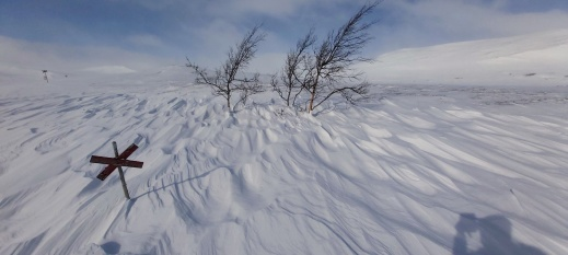 Vinden har sept iväg lössnön, och den hårda skaren visar upp sitt konstverk.