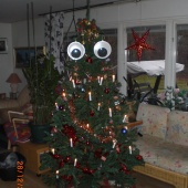 The xmas tree sees you