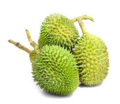 Durian frukt Thailand