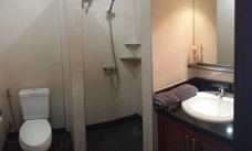 Bathroom Palm Leaf apartment