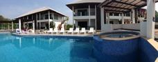 Pollområde på Palm Leaf Thailand