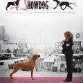 Grafiskt arbete: Annons till Show Dog